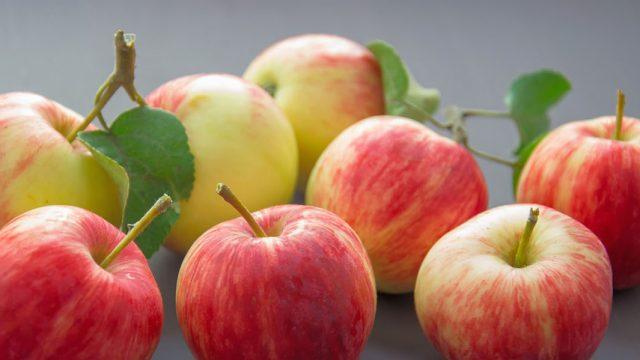 Conservation de vos pommes